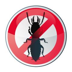 Utilisation de produits label vert, respectueux de l'environnement et de la santé des personnes pour traiter les termites